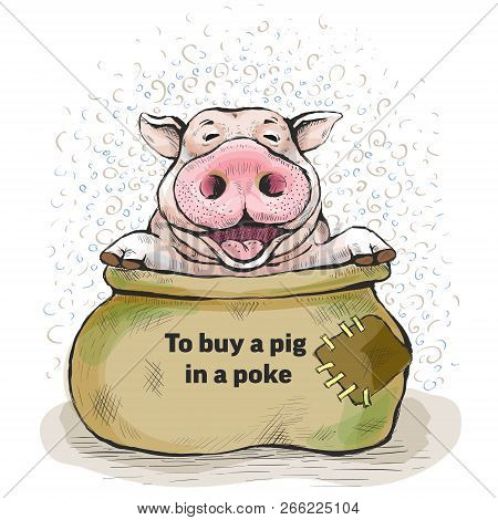 Series Of Postcards With A Piglet. Proverbs And Sayings. To Buy A Pig In A Poke. The Sack Opened, An