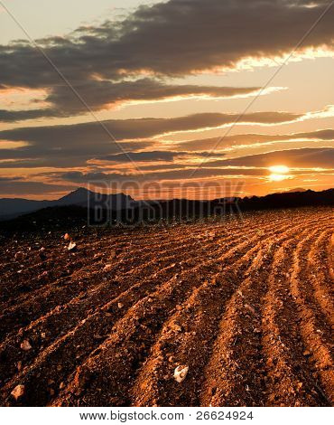 plowed land, on background sun dawn the hill