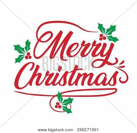 Merry Christmas Holiday Season Mistletoe Signage PNG poster