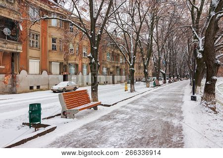 Uzhgorod, Ukraine - Jan 05, 2016: Linden Alley In Winter. Old Czechlova Architecture On The Nezalezh