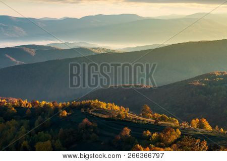 Forested Rolling Hills In Autumn. Beautiful Scenery At Sunrise. Distant Walley With Glowing Fog