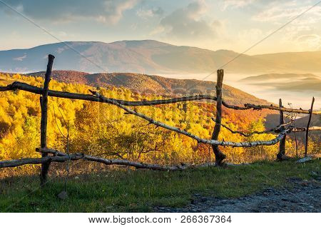 Fence On The Country Road At Sunrise. Beautiful Autumn Scenery At Sunrise. Forest In Golden Foliage
