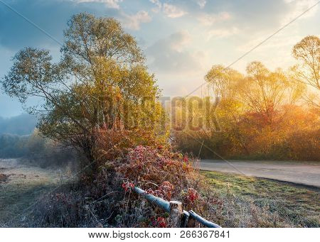 Frosty November Countryside At Sunrise. Unusual Weather With Blue Fog In The Distance And Hoar Frost