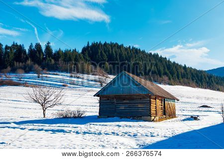 Abandoned Barn In Carpathian Mountains. Beautiful Sunny Winter Weather. Spruce Forest In The Distanc