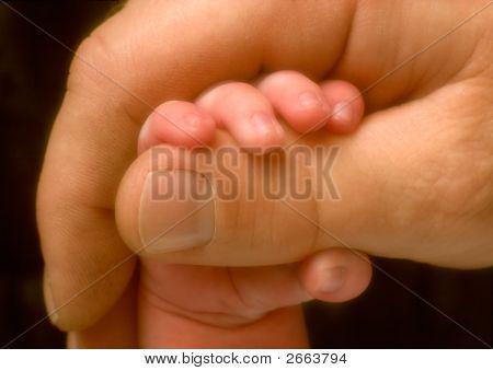 Baby'S Small Hand