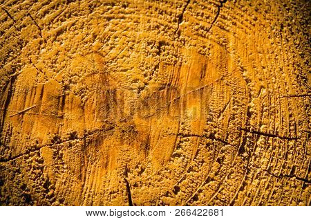 A Wooden Texture Surface As A Background