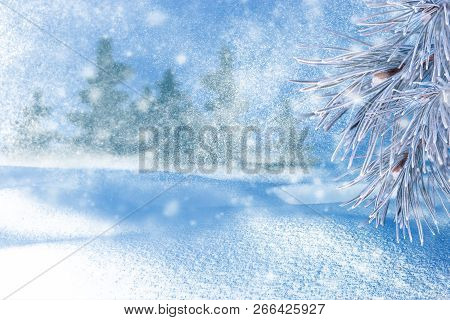 Winter Landscape With Snow. Christmas Background With Fir Branch And Christmas Ball.merry Christmas