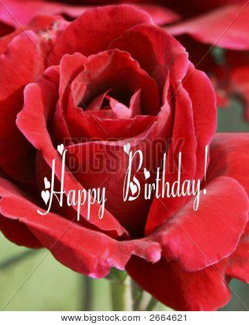 Happy Birthday Red Rose