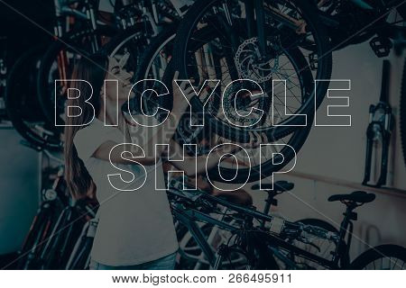 Bicycle Shop. Salesman Holding Wheel Of The Bicycle. Young Beautiful Woman. Woman Looking On The Bik