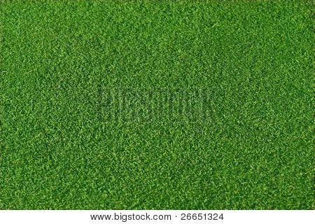 Erg glad groen gras