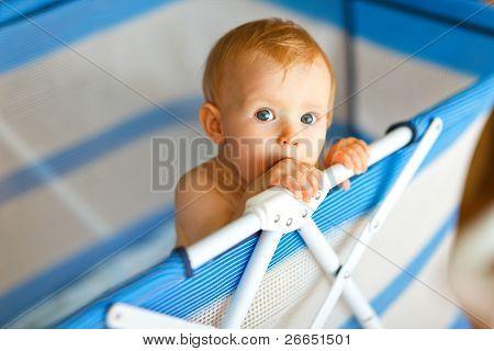 Portrait Of Baby In Playpen