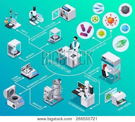 Microbiology Lab Flowchart  Bioreactor Electron Microscopy Seeding Bacteria Colony Counting  Isometr