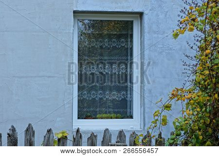Window With Gray Curtains And Cacti On The Windowsill On The Concrete Wall Behind The Fence