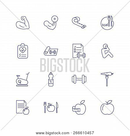 Sport Training Icons. Set Of Line Icons On White Background. Bodybuilding, Sport Nutrition, Dieting.
