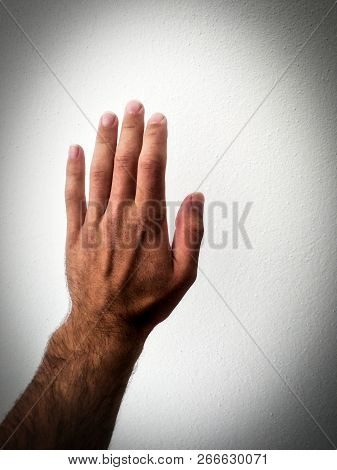 White Man's Palm, Outstretched Palm, Hand On A White Background, Part Of The Body, Part Of The Hand,