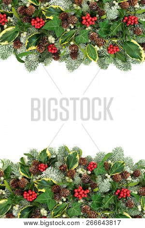 Winter and Christmas natural background border with holly berries, snow covered spruce pine, ivy, pine cones and mistletoe on white with copy space.
