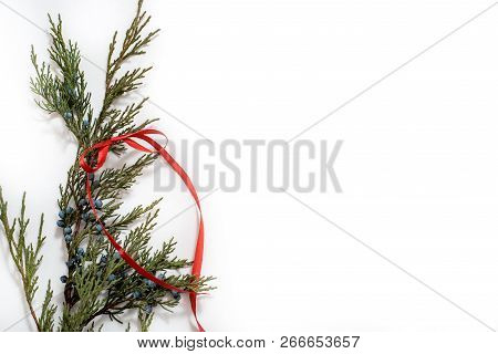 christmas tree with cones border on a white background new year holiday evergreen tree