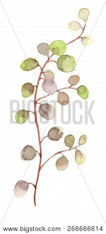 Hand Drawn Watercolor Leaf Branch Isolated On White Background. Perfect For Cards And Bouquets, Bann