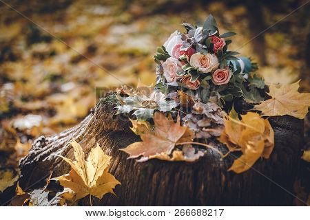 Close-up Photo Of Golden Rings On Wooden Stump. Wedding Bouquet And Rings On Stump In Autumn Forest.
