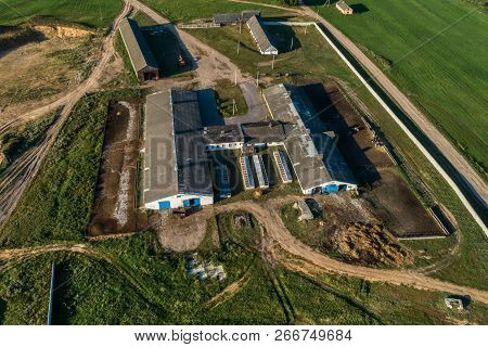 Small Livestock Farm. Evening Shooting. Aerial View