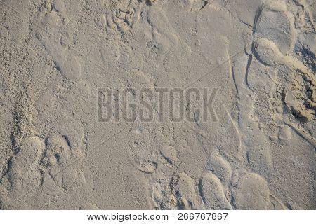 White Sand Beach Texture. Sea Coast Top View Photo. Sea Sand With Step Mark Texture. Smooth Sand Sur