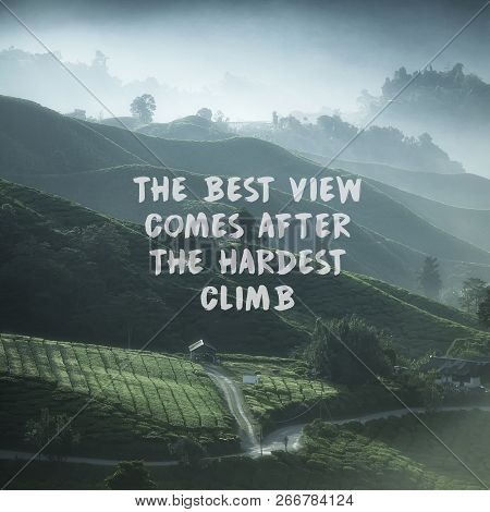 Inspirational Quotes On Nature Tea Plantation Background. The Best View Comes After The Hardest Clim