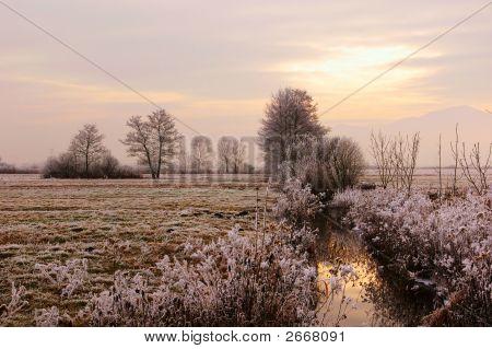 Frozen Countryside