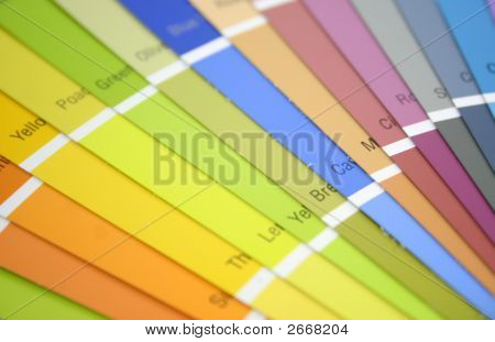 Colorful Swatches