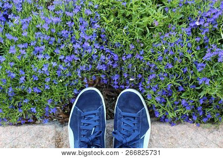 Blue Shoes Against A Beautiful Background Of Blue Flowers And Grass. Colorful Artsy Composition. Tex