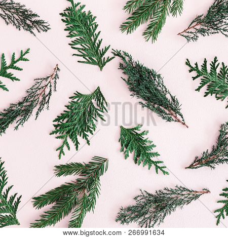 Christmas Composition. Pattern Made Of Coniferous Tree Branches On Pastel Pink Background. Christmas