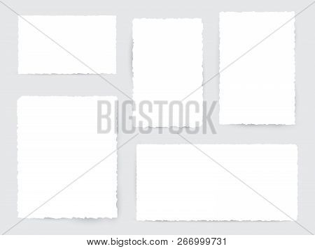 Blank White Torn Paper Pieces. Design Element Ripped Sheets Paper. Vector Illustration Set