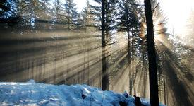 Light Rays On Snow