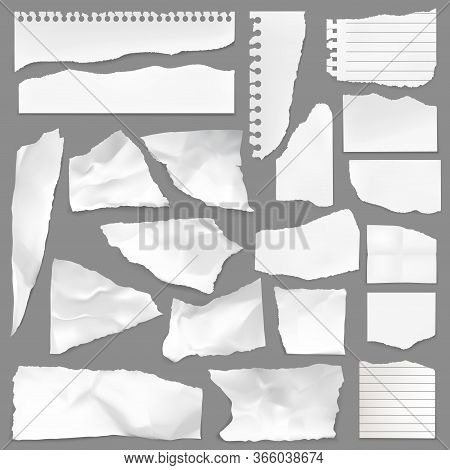 Torn Note Paper Scraps, Vector Ripped Blank Pieces And Scrapbook Notes With Lines. Perforated Ragged