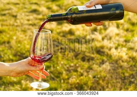 Wine Pouring From Bottle, Outdoor Picnic. Pouring Red Wine Into A Glass In The Garden. Garden Party
