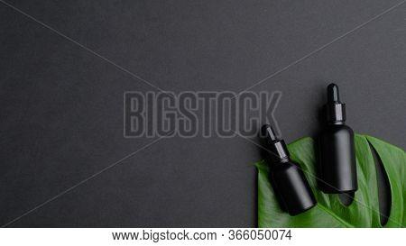 Black Dropper Bottles On Tropical Leaf On Black Background. Spa Natural Organic Skin Care Lotions, L