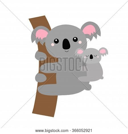Koala Bear Face Head Hanging On The Tree Branch. Mother And Baby. Kawaii Animal. Cute Cartoon Funny