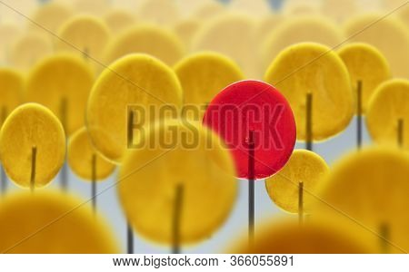 Crowd Of Yellow Lollipops And Red Lollipop. Individuality. Uniqueness. Different Personality And Cha