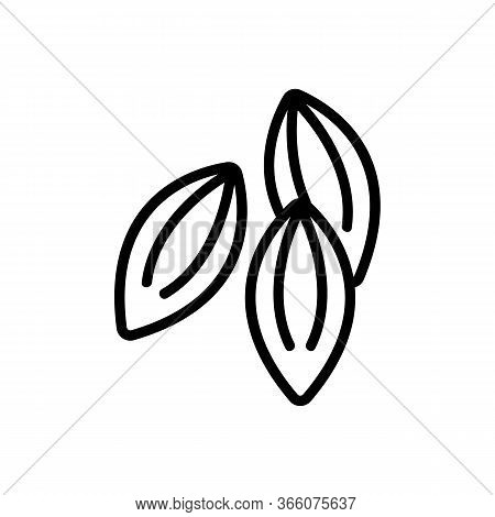 Dill Seeds Icon Vector. Dill Seeds Sign. Isolated Contour Symbol Illustration