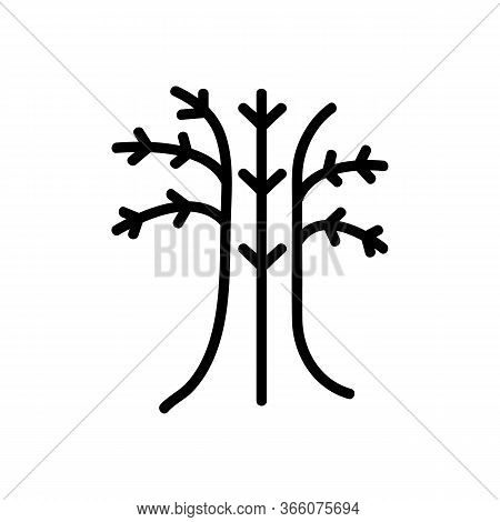 Fennel Trunk Icon Vector. Fennel Trunk Sign. Isolated Contour Symbol Illustration