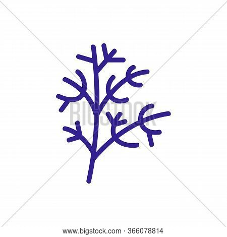 Sprig Of Fennel Icon Vector. Sprig Of Fennel Sign. Color Symbol Illustration