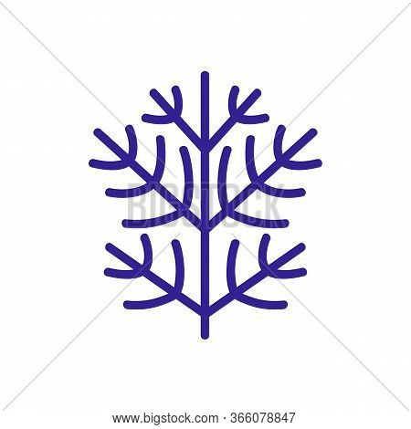 Sprig Of Dill Icon Vector. Sprig Of Dill Sign. Color Symbol Illustration