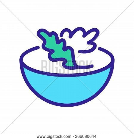 Arugula In Salad Bowl Icon Vector. Arugula In Salad Bowl Sign. Color Symbol Illustration