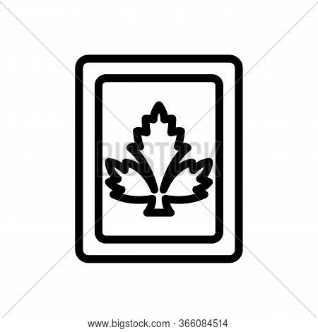 Pack Of Coriander Seeds Icon Vector. Pack Of Coriander Seeds Sign. Isolated Contour Symbol Illustrat