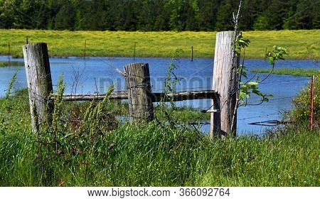 Three Big Wooden Fence Posts Hold Support Corner Structure.  Pond Reflects Blue Sky Behind Posts.