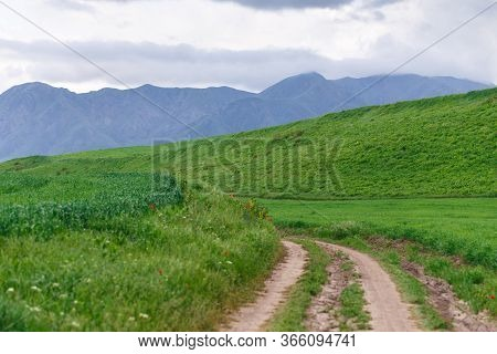 Beautiful Spring And Summer Landscape. Mountain Country Road Among Green Hills. Lush Green Hills, Hi