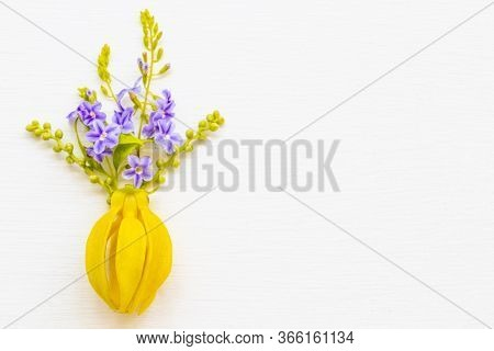 Yellow Flower Ylang Ylang With Purple Flora Local Flora Of Asia Arrangement Flat Lay Postcard Style