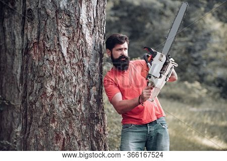 Lumberjack Concept. Lumberjack Worker Walking In The Forest With Chainsaw. Woodcutter With Chainsaw