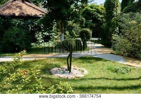 Figure Of Flamingo Made Of Green Lawn Grass In The Park, Copy Space. Green Grass Covered Topiary Fla