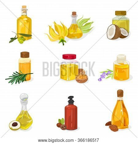 Big Set Of Glass Bottles, Vials, Jars Closed By Cap, Cork With Essential Oil Of Olive, Ylang Ylang,