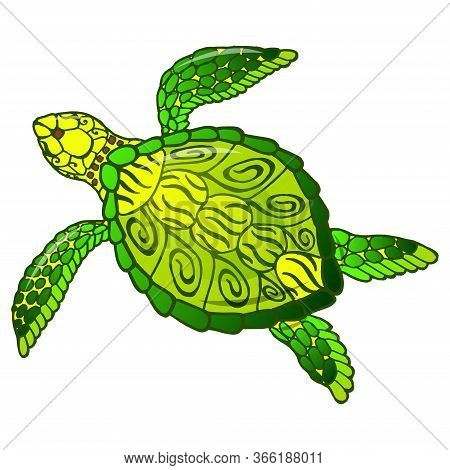 Sea Turtle. Bright Tropical Underwater Fauna. Isolated On White. Underwater World.